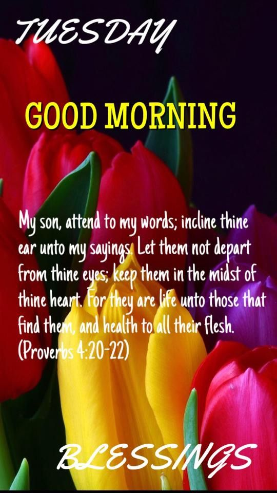 1034 best Good Morning images on Pinterest   Bible verses ...