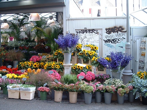 Цветочный рынок Блуменмаркт