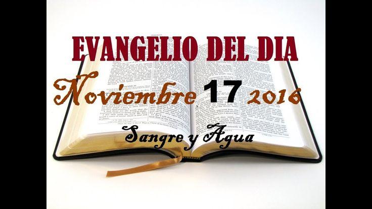 Evangelio del Dia- Jueves 17 de Noviembre 2016- Sangre y Agua