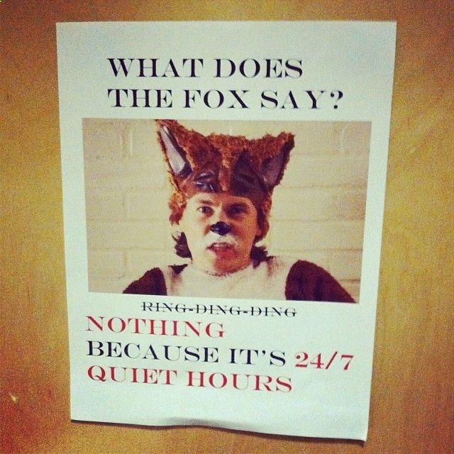 this is perfect for my crazies what does the fox say... nothing, because its 24 hours quiet hours