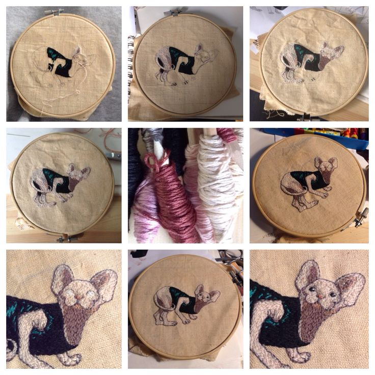 Cat | filo di cotone su cotone #art #artoftheday #handmade #madeinitaly #ricamo #agoefilo #lettering #embroidery #passato #textile #design #craft #fromanotheroom #rossellaogliarulo #Sphynx #artigianato
