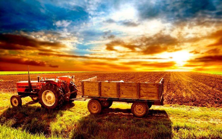 Коммерческие предложения пользователей сообщества O9C4.RU: Сельское Хозяйство, Еда и Напитки.