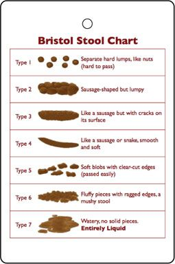 Good info but the poo chart made me lol!   poop, constipation, irritable bowel syndrome, paleo, paleo diet