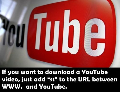 163 best youtube video downloader images on pinterest cat an easy way to download youtube videos to your computer without any software ccuart Choice Image