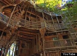 watch inside one of the worlds largest treehouse