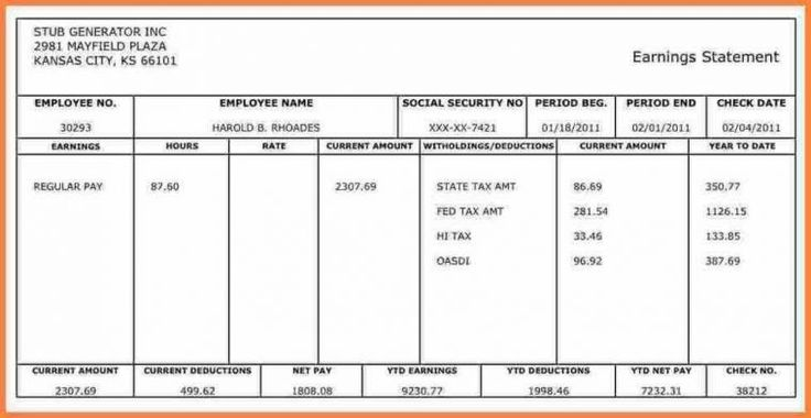 10 best Blank Pay Stub Template Word images on Pinterest Sample - pay statement template