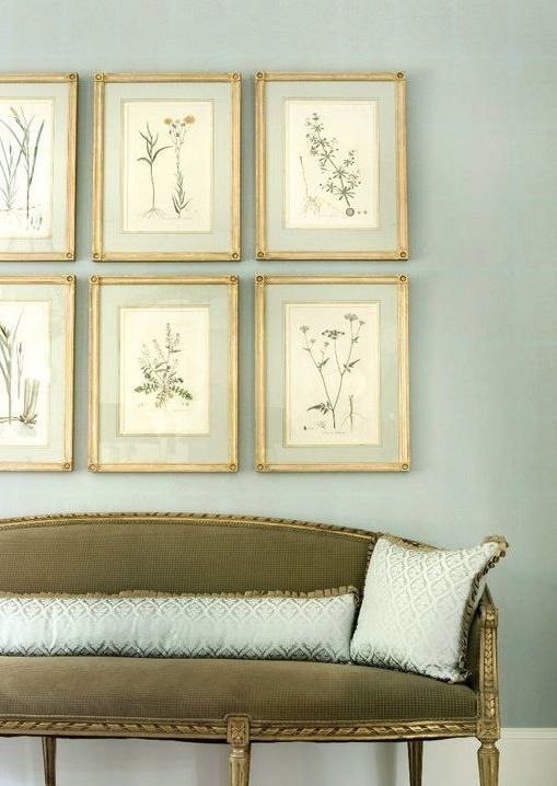 Botanical art framed with french matting by Liz Williams Interiors - Hadley Court