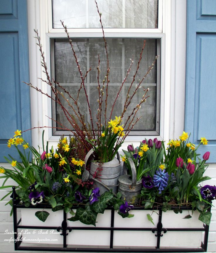 DIY Project ~ Welcome Spring! Time to change the window boxes! | Our Fairfield Home & Garden