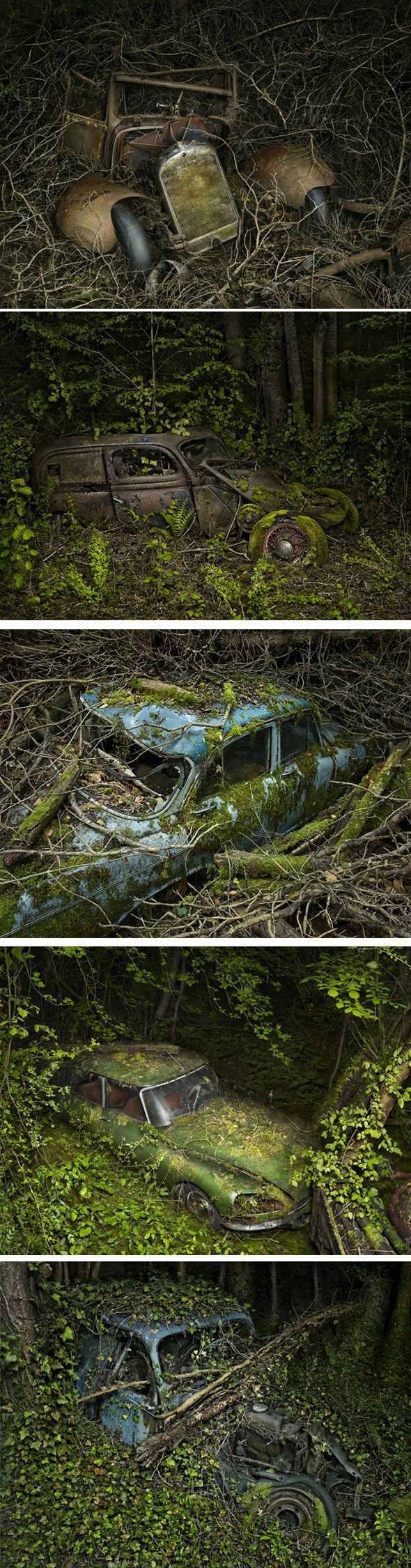 Cimetière de voitures par Peter Lippman