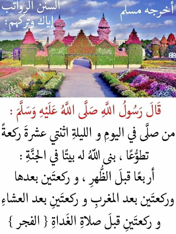 Pin By Fmousavi On أحاديث نبوية Islamic Messages Islamic Phrases Photo Quotes