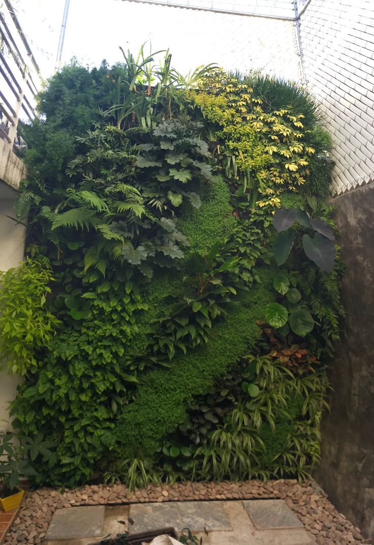 1133 best GARDEN - Green Walls / Green City images on Pinterest ...