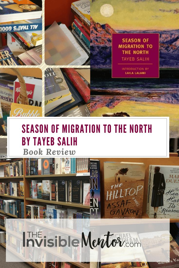 This is a summary and review of Season of Migration to the North. One of the ways I gain an understanding of different cultures is by following a global reading list. Season of Migration to the North by Tayeb Salih was on one of those lists. Reading about other cultures is often not an easy thing to do, especially when everything appears so 'foreign'. Reading the world allowed me to successfully complete projects where I was working with those whose culture is different from mine. The book…