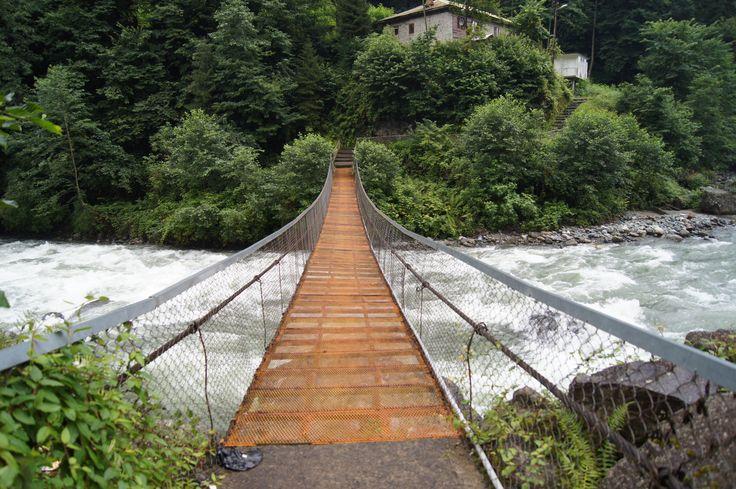 #stream #fırtına #nature #bridge #Rize #Turkey