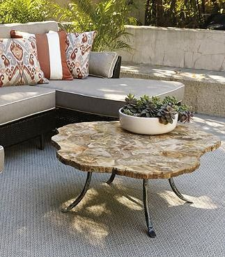 Crafted from petrified wood -- wood turned to stone -- this table is a highly durable work of art, and perfect for outdoor use.Wood Coffee Tables, Ideas, Living Spaces, Decks, Living Room, Petrified Wood, Gardens, Outdoor Coffee Tables, Accent Tables