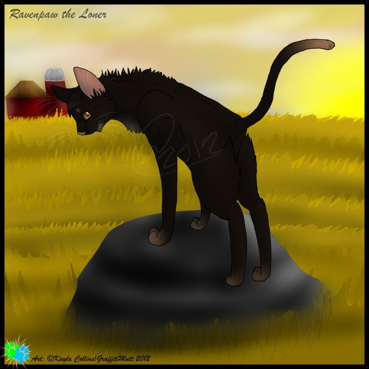 Falling Feathers Death Warrior Cats