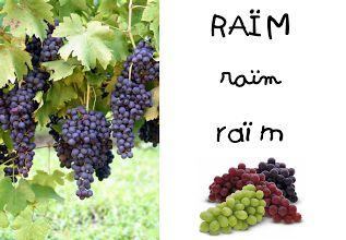 Foto: http://quehacemoshoyenelcole.blogspot.com.es/