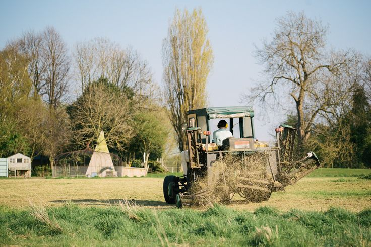Our cute, vintage tractor mowing the meadow