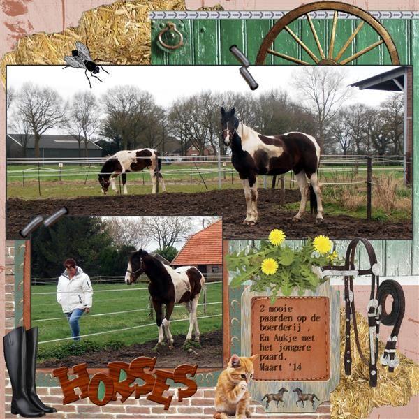 Made by Nelleke with Horse Ride , you can find all shop links on http://lizzyqxdesign.blogspot.nl/ Hier mijn lo Paarden gemaakt met Els haar prachtige kit Horse Ride from LizzyQXdesign Winkel link - http://www.ivyscraps.com/store2/index.php?main_page=product_info&cPath=1_5_158&products_id=2448 Mijn eigen foto's gedurende ons weekendje weg met de meiden van de motor club , we waren op een koeien boerderij en daar waren ook deze 2 mooie paarden. Zelf schaduw aan gebracht Font – Batang Che