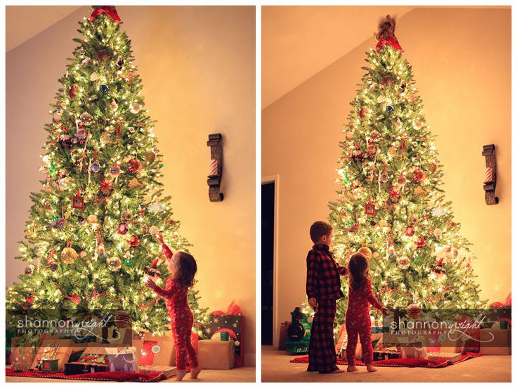 Manual camera settings for taking a great Christmas tree photo