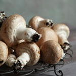 Brown Button (Portabellini)  The Portabellini is stronger in flavour than its white equivalent.  It is highly versatile and its dense flesh makes it the perfect choice to be used whole (raw or cooked) in salads, kebabs and antipasto.