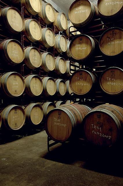 barrelroom  Alentejo Portugal
