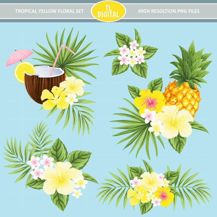 Tropical Flowers Clipart Set - Yellow Flower Tropical set - Hibiscus Clipart - 17 design pieces by TLDigital on Etsy
