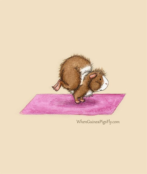 Items similar to Side Crow Pose - Yoguineas Collection - Cute Guinea Pig Yoga Art Print on Etsy