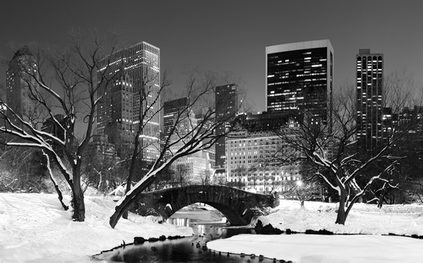 modern canvas - free worldwide shipping - Central Park In Winter, $199.00 (http://www.moderncanvas.com.au/central-park-in-winter/)