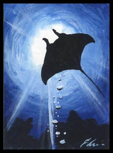 Fantastic Stingray By Eddy Delacruz D Sea Life