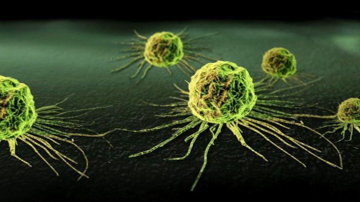 Een nieuwe kankertherapie op maat leert het immuunsysteem om kankercellen aan te vallen. Wetenschappers van de universiteit van Michigan plaatsen nanocapsu