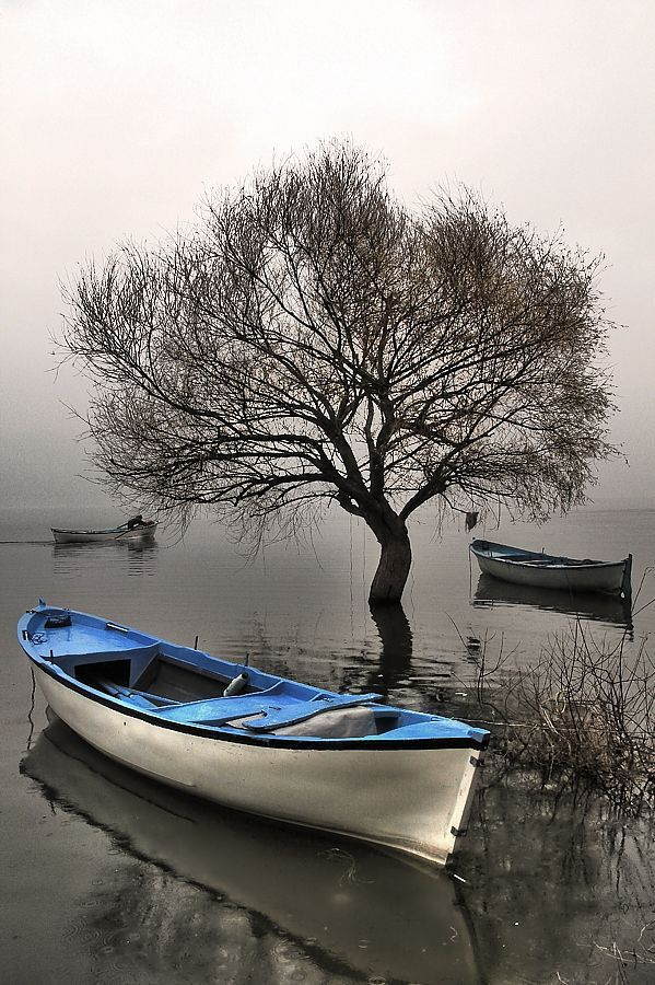 black and gray lake photo with a spot of white and blue in a boat...: