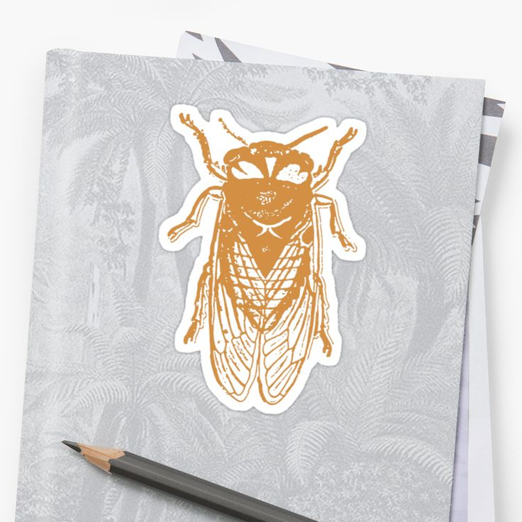 The cicadas are a superfamily, the Cicadoidea, of insects in the order Hemiptera. They are in the suborder Auchenorrhyncha, along with smaller jumping bugs such as leafhoppers and froghoppers. • Also buy this artwork on stickers, apparel, phone cases, and more.