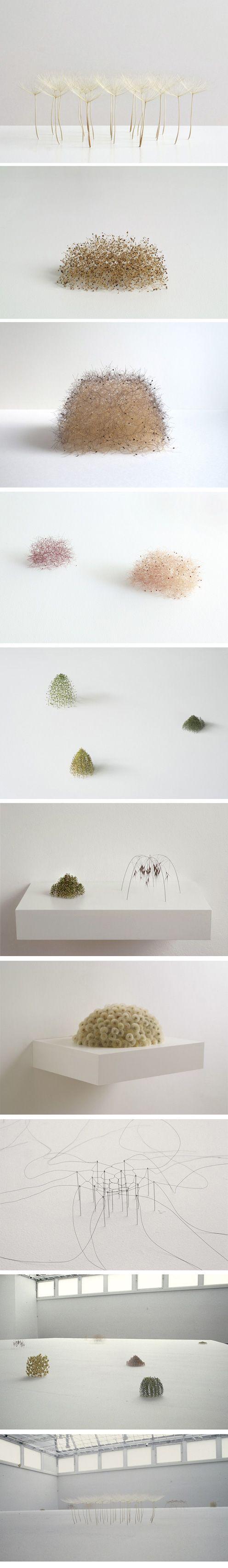 The work of Christiane Löhr found at http://www.christianeloehr.de/index.html