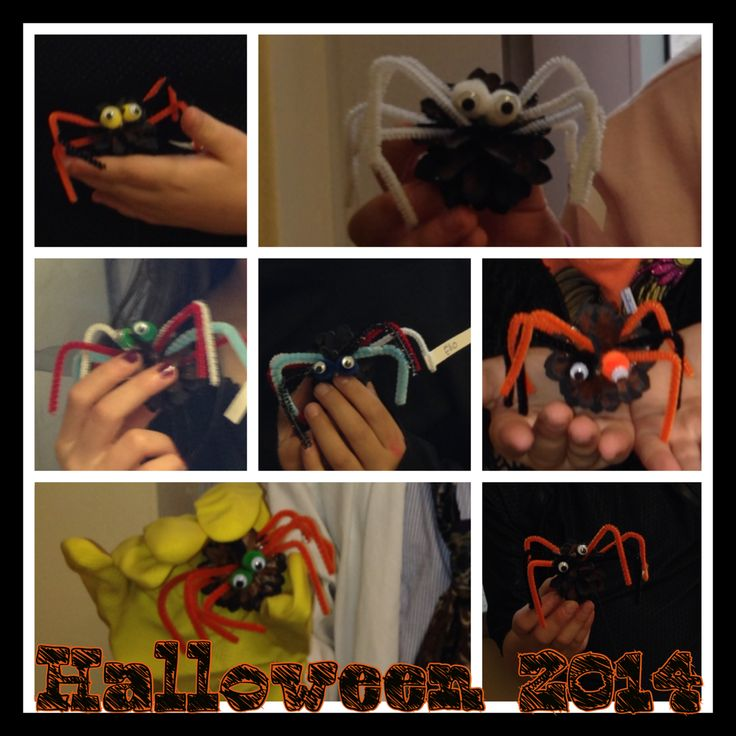 Halloween 2014  Araignée en cocotte de pin  Avec mon groupe de 1ère et  2 e année