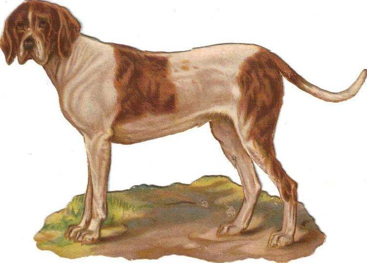 Larger Victorian Die Cut Scrap Hound Dog c1880s: