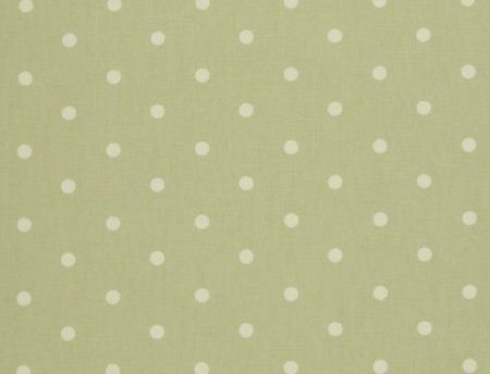 Clarke and Clarke Dotty Sage | Textile Express | Buy Fabric