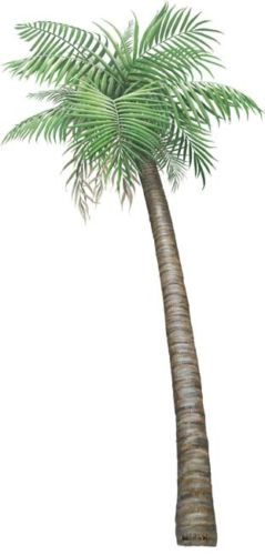 Palm-Tree-Stickers-Decals-Giant-Wildlife-Mural