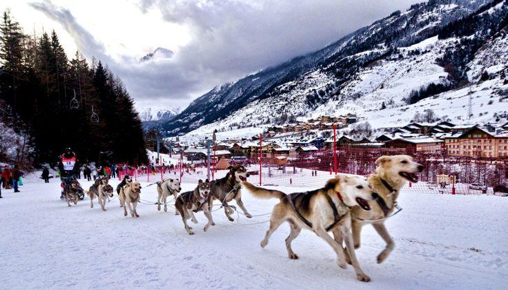 Samedi 16 janvier : La Grande Odyssée Savoie Mont Blanc