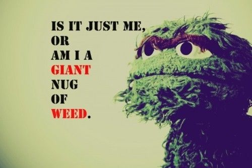 PRICELESS.: Thoughts, Laughing, Sesame Street, So Funnies, Weed, Humor, Funnies Shit, Oscar The Grouch, Funnies Stuff