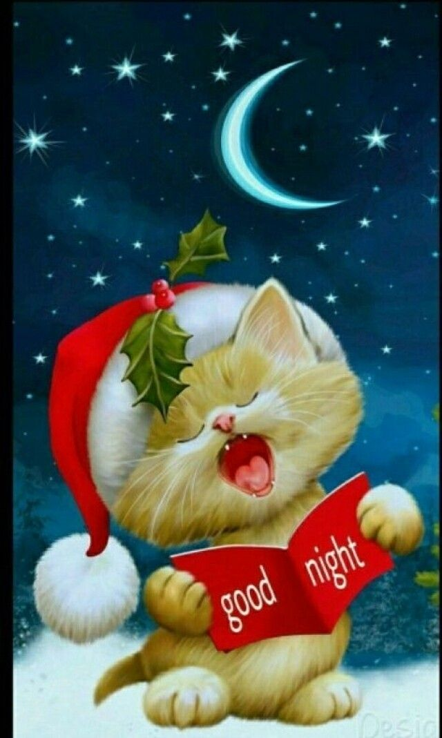 Goodnight Sweet Dreams of a Merry Christmas!!!
