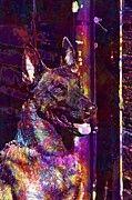 "New artwork for sale! - "" Portrait Malinois Dog  by PixBreak Art "" - http://ift.tt/2tyFz0D"