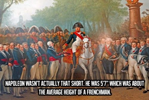 """Awesome Facts About Life (19) Napoleon wasn't actually that short.. He was 5'7"""" which was about the average height of a Frenchman..."""