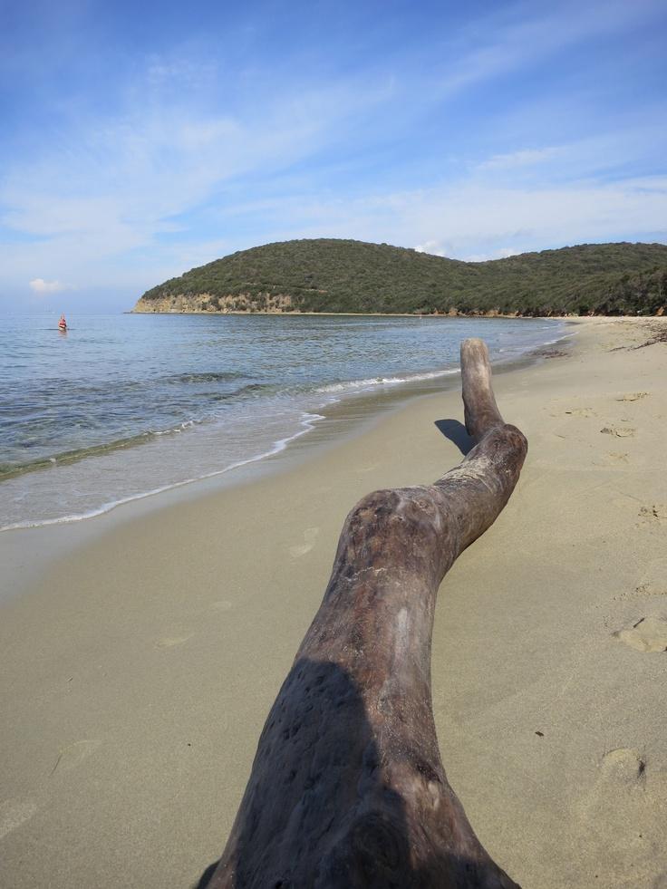 Cala Violina, Italy #beach
