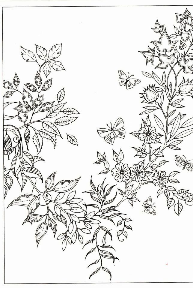 1000 Images About Floral Coloring Pages For Adults On