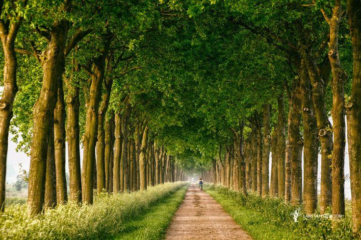 towards summer by Lars van de Goor on 500px