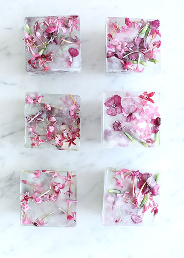 GALentine's Day: Flower Ice Cubes