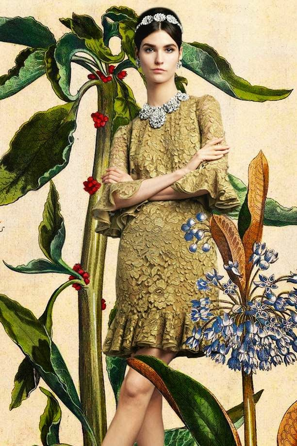 The Terrier and Lobster: Dolce & Gabbana Spring 2014 Botanical Lookbook
