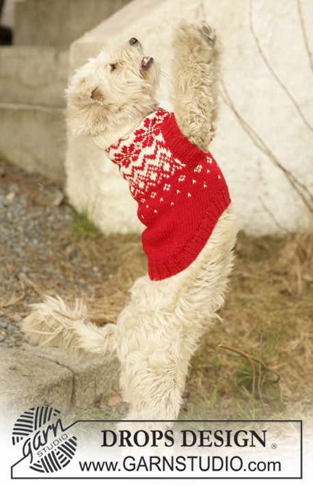 """Puppies need sweaters too! Make this festive dog jumper in some DROPS Karisma, Merino Extra Fine or Lima! Knitted DROPS dog coat in """"Karisma"""" with traditional Norwegian pattern. ~ DROPS Design"""