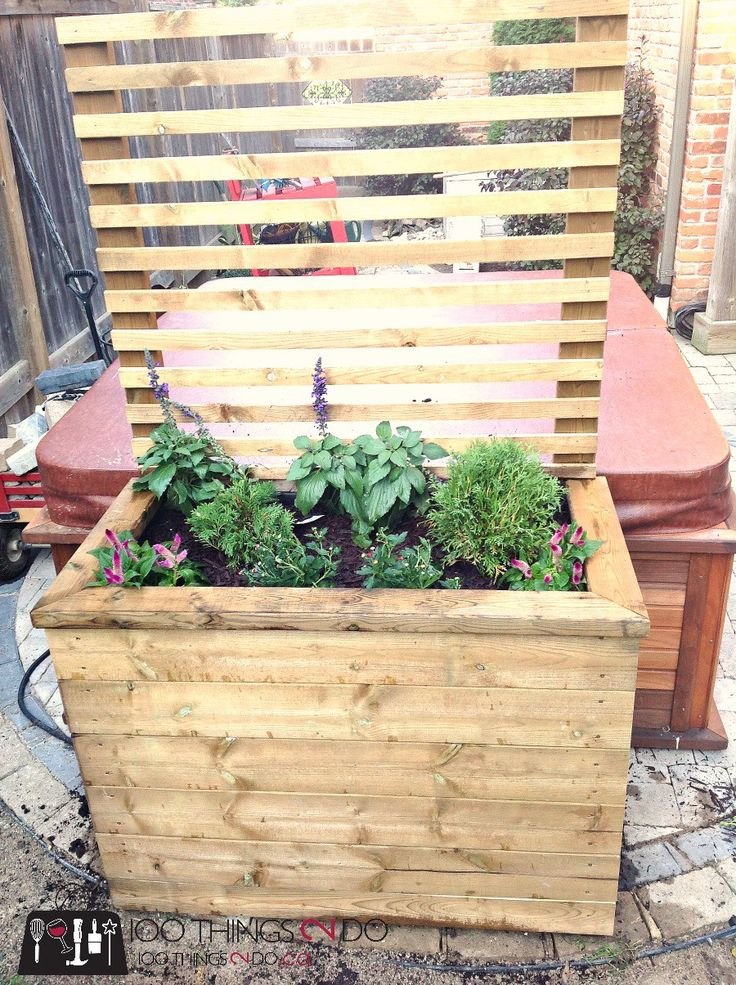Best 25 privacy planter ideas on pinterest patio for Privacy planter ideas