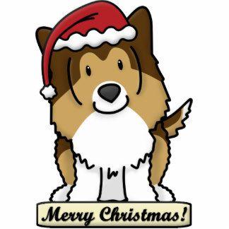 17 Best images about Shelties on Pinterest | Shetland sheepdog ...